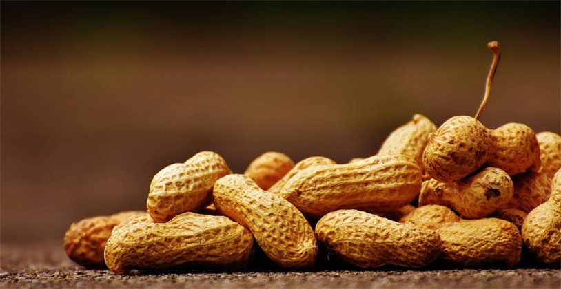 Bullies Peanuts