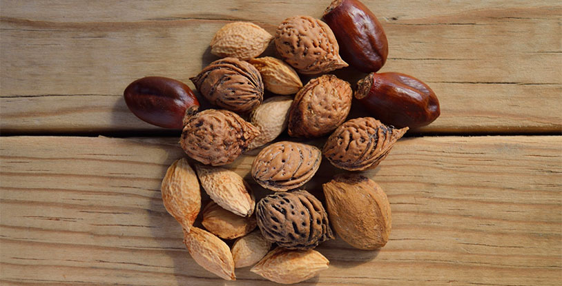 Eating Nuts Can Boost Your Sperm Count