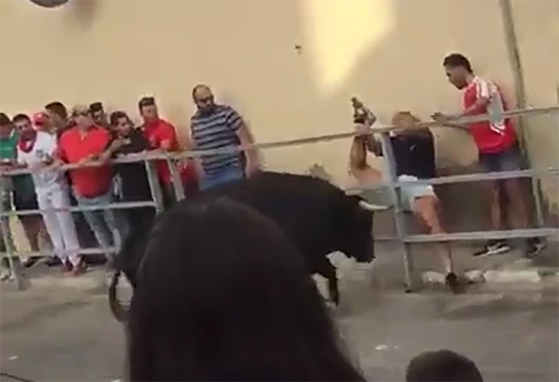 Man Takes Horn Through The Ballsack At The Running Of The Bulls