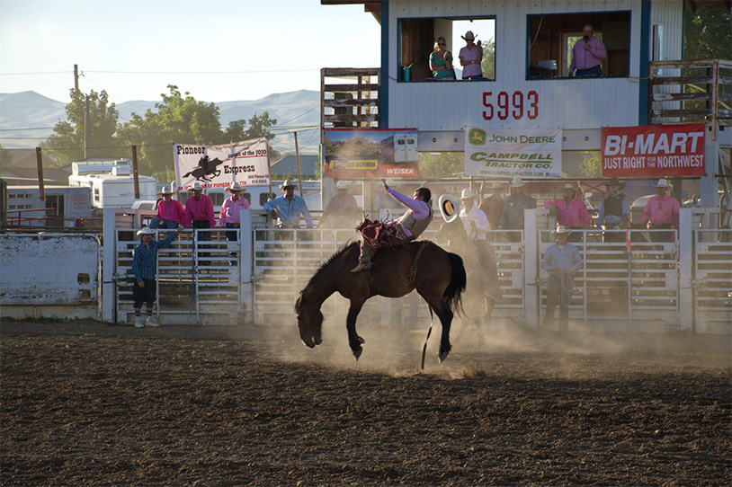 Rodeo Association Hosting Twisted Nut Festival