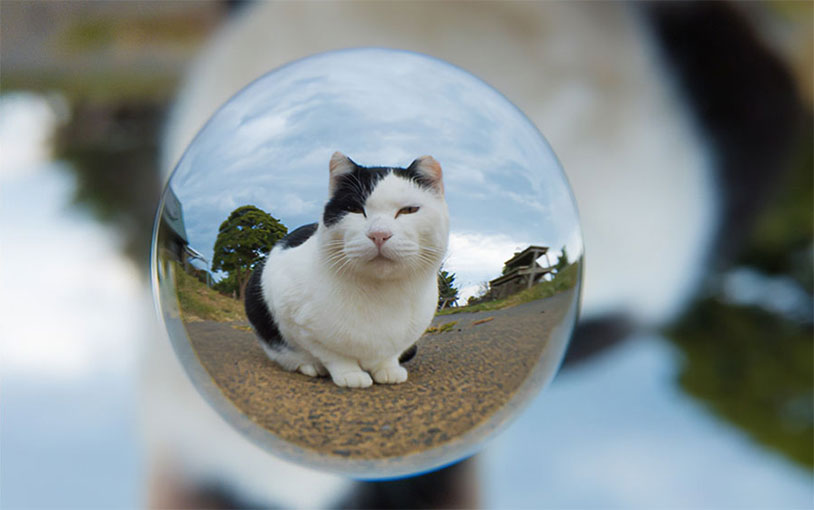This Camera Lens Lets You Take Floating Crystal Ball Pictures